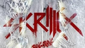 Skrillex Bangarang Review